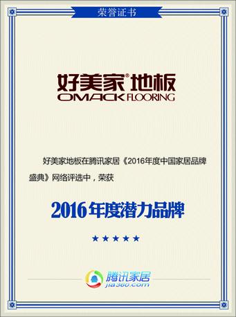 2016年度潜力品牌