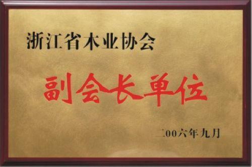 浙江省木业协会副会长单位