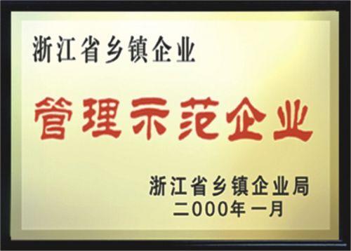 浙江省乡镇企业管理示范企业