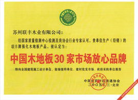 中国木地板30家市场放心品牌