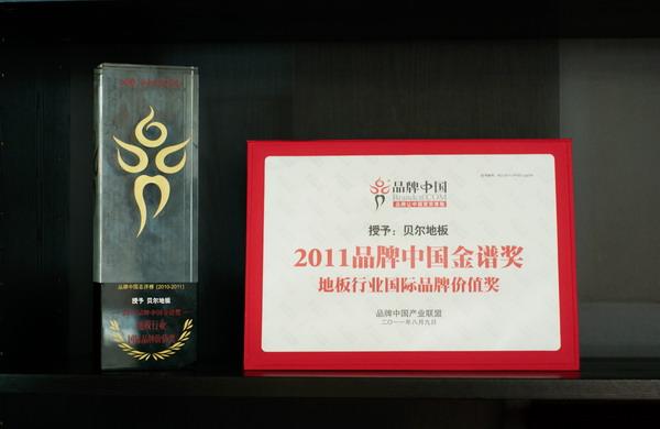 品牌中国·国际品牌价值奖