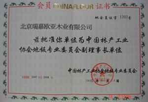 中国林产工业协会地板委员会副理事长单位