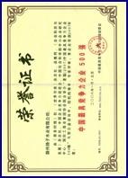 中国500强证书
