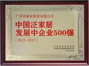 中国泛家居500强单位.jpg