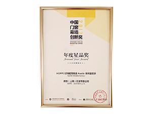 2017-annual-star-award-300x225.jpg